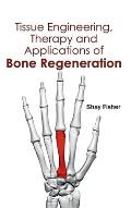 Tissue Engineering, Therapy and Applications of Bone Regeneration