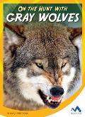 On the Hunt with Gray Wolves