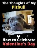 The Thoughts of My Pitbull: How to Celebrate Valentine's Day