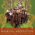 Walking Meditation Easy Steps to Mindfulness