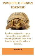 Incredible Tortoise: The Russian Tortoise: Russian Tortoise Care For Beginners. All You Need To Know Concern The Daily Care, Pro's and Cons