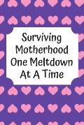 Surviving Motherhood One Meltdown At A Time: Baby's Daily Log Book To Track & Record Sleep, Breastfeeding, Diapers of Newborn Babies: Perfect Gift For