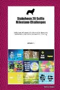 Stabyhoun 20 Selfie Milestone Challenges: Stabyhoun Milestones for Memorable Moments, Socialization, Indoor & Outdoor Fun, Training Volume 4