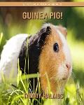 Guinea Pig! (Discover Your Animals)