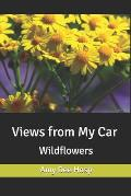Views from My Car: Wildflowers
