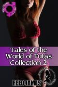 Tales of the World of Futas Collection 2