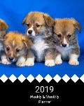 2019 Weekly and Monthly Planner: Welsh Corgi Puppies Daily Organizer -To Do -Calendar in Review/Monthly Calendar