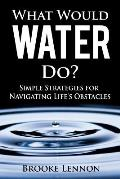 What Would Water Do?: Simple Strategies for Navigating Life's Obstacles