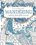 Wandering: a coloring book of the unusual