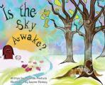 Is the Sky Awake?