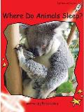 Where Do Animals Sleep?