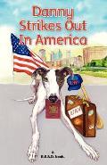 Danny Strikes Out In America: a R.E.A.D book