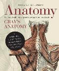 Anatomy A Complete Guide to the Human Body for Artists & Students