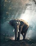 2019 Baby Elephant Gratitude Journal Daily Planner: Academic Hourly Organizer in 15 Minute Interval; Appointment Calendar with Address Book; Monthly &