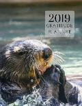 2019 Otters Gratitude Journal Daily Planner: Academic Hourly Organizer in 15 Minute Interval; Appointment Calendar with Address Book; Monthly & Weekly