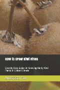 How to Grow Kiwi Vines: Step-By-Step Guide on Growing Hardy Kiwi Plants in Colder Climate