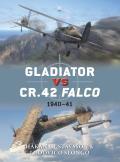 Gladiator vs CR 42 Falco 1940 41