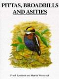 Pittas Broadbills & Asities
