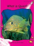 What Is Quiet?
