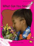 What Can You Smell?
