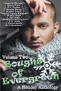 Boughs of Evergreen: A Holiday Anthology (Volume Two)
