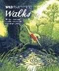 Wild Swimming Walks Around London: 28 Lake, River and Seaside Days Out by Train from London