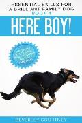 Here Boy!: Step-by-Step to a Stunning Recall from your Brilliant Family Dog