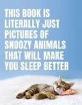 This Book Is Literally Just Pictures of Snoozy Animals That Will Make You Sleep Better