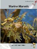 Marine Marvels