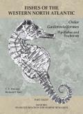 Order Gasterosteiformes