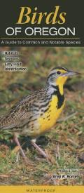 Birds of Oregon A Guide to Common & Notable Species