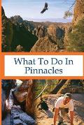What To Do In Pinnacles