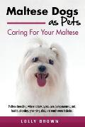 Maltese Dogs as Pets: Maltese breeding, where to buy, types, care, temperament, cost, health, showing, grooming, diet, and much more include