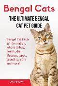Bengal Cats: Bengal Cat Facts & Information, where to buy, health, diet, lifespan, types, breeding, care and more! The Ultimate Ben