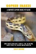 Gopher Snakes: Gopher Snakes General Info, Purchasing, Care, Cost, Keeping, Health, Supplies, Food, Breeding and More Included! A Com