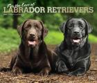 Labrador Retrievers, for the Love of 2020 Deluxe Foil