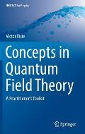 Concepts in Quantum Field Theory: A Practitioner's Toolkit