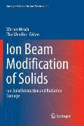 Ion Beam Modification of Solids: Ion-Solid Interaction and Radiation Damage