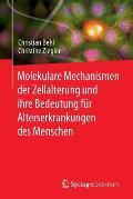 Molekulare Mechanismen Der Zellalterung Und Ihre Bedeutung F?r Alterserkrankungen Des Menschen