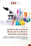 Synthese de Nouveaux Derives de 3-Methyl-2-Substitue Quinoxaline