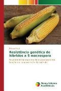 Resistencia Genetica de Hibridos A S Macrospora