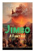The Jimbo: A Fantasy (Adventure Classic): Mystical adventures - The Empty House Mystery