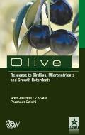 Olive Response to Girding, Micronutrients and Growth Retardants