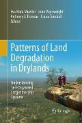 Patterns of Land Degradation in Drylands: Understanding Self-Organised Ecogeomorphic Systems