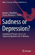 Sadness or Depression?: International Perspectives on the Depression Epidemic and Its Meaning