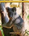 Koala: Sagenhafte Bilder und Fakten